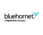 BlueHornet-180x145-V2